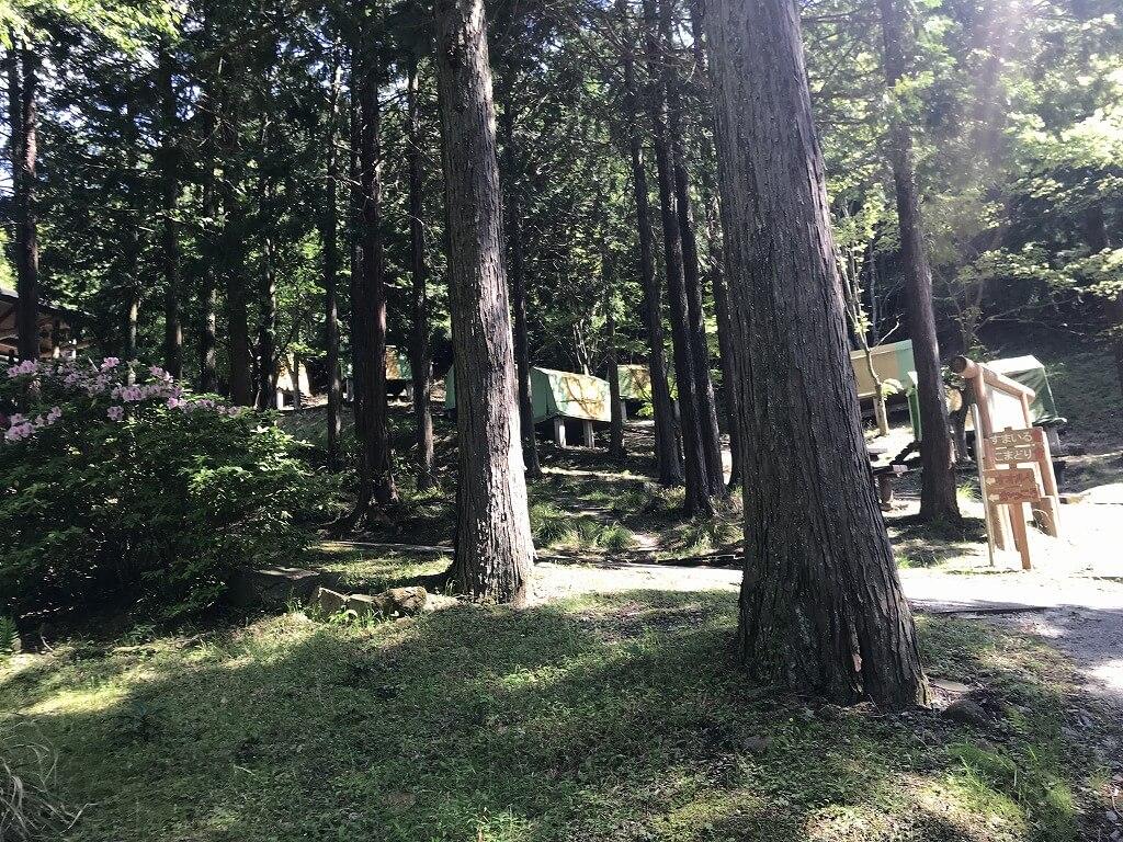 求菩提キャンプ場のイメージ画像